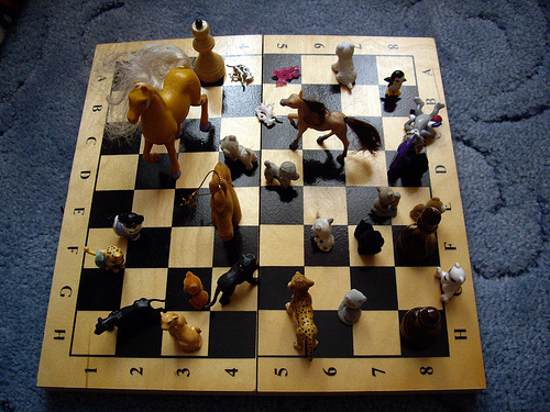 chess looser photo